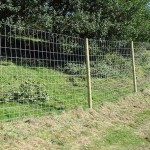 Low cost fence for woods