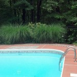 Pool with black fence