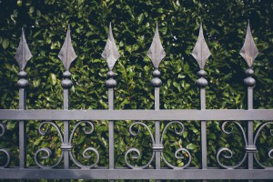 iron fence with green leaves background, vintage